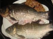 魚頭木耳湯