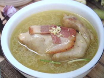 孕婦鴿子湯