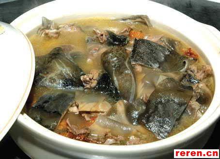 砂锅炖甲鱼