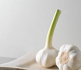 保养肠胃可以吃什么?